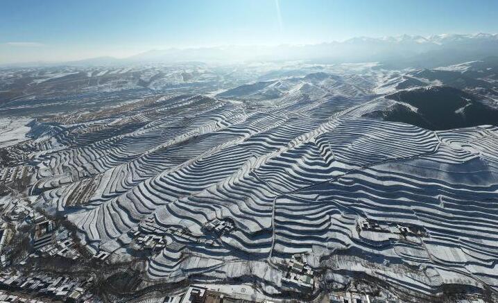 甘肃天祝:雪落梯田景色美