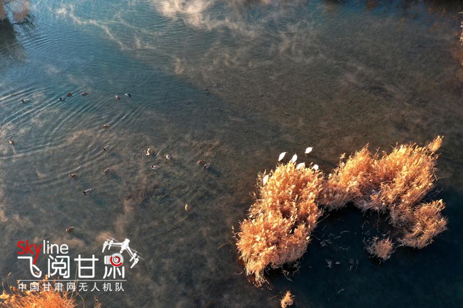 【飞阅甘肃】张掖湿地公园:水雾蒸腾似仙境