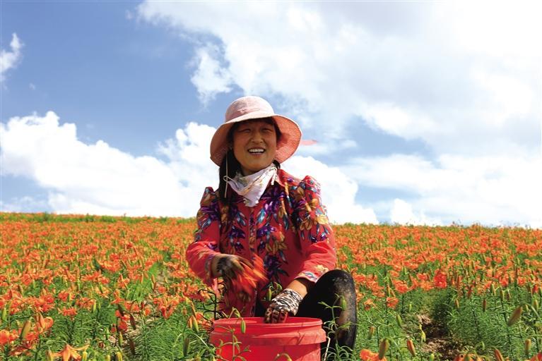 兰州:助力乡村振兴 特色农产品唱起主角