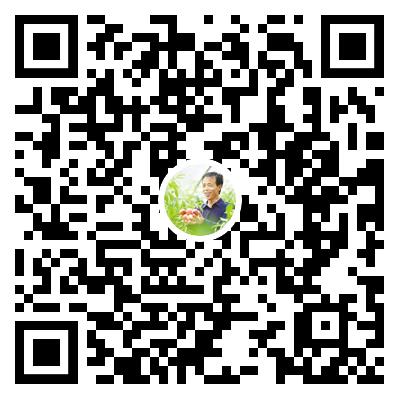 """【走向我们的小康生活】长图 秦安 """"桃花源""""里幸福长"""