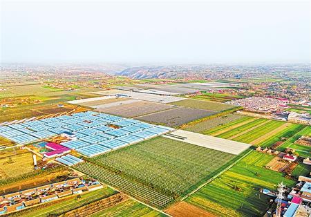 甘肃发展特色产业推动脱贫攻坚衔接乡村振兴报道之二 新型主体龙头带动兴产业