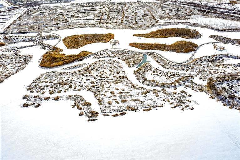 张掖国家湿地公园雪景如画