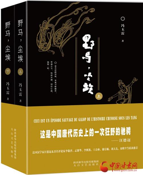 皇皇百万言 历时十二年,甘肃作家冯玉雷新作《野马,尘埃》书写敦煌