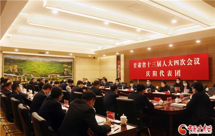 【聚焦2021甘肃两会·图片报道】各代表团审议政府工作报告