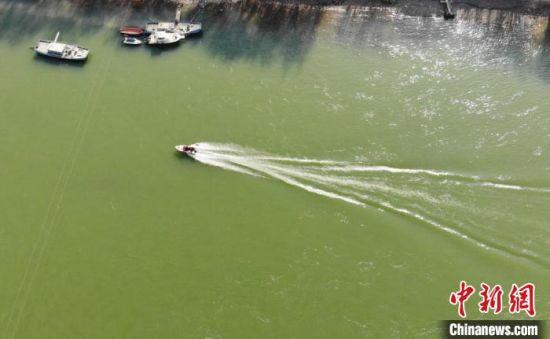 """图为1月中下旬,黄河兰州段呈现出""""翠绿""""之色。 杨艳敏 摄"""