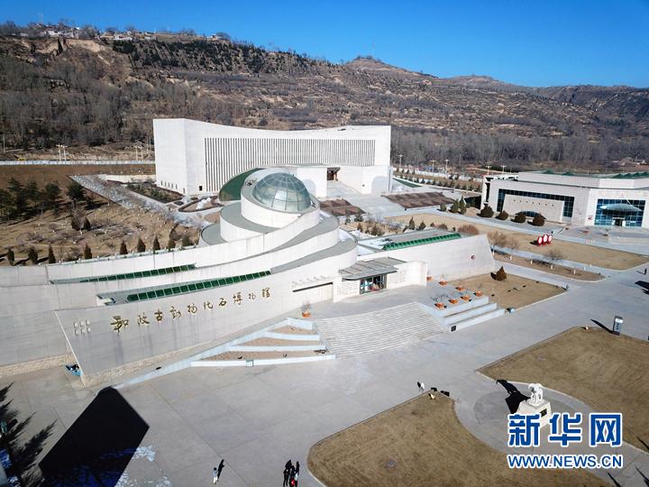 感受3000万年前的生命跃动——走进甘肃和政古动物化石博物馆
