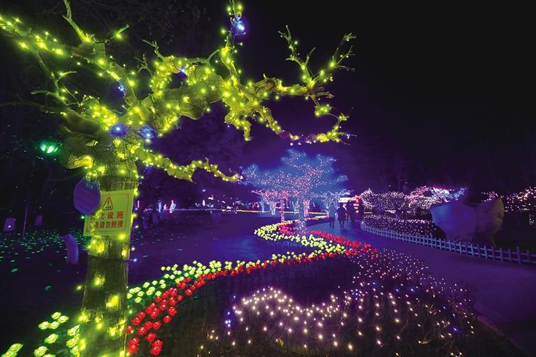 【新春走基层】金城公园灯会点亮 出行提示来了