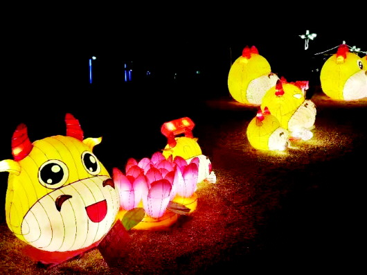 金岭公园:花灯璀璨迎元宵