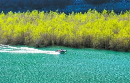 文县白龙江畔景色如画