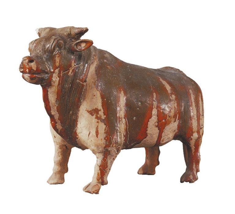 打开眼界丨牛年看牛,越看越牛!