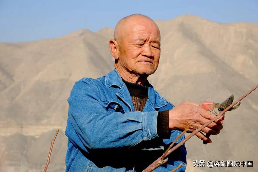 三十年如一日,兰州市榆中县青城镇金学义植树造林保护生态环境。