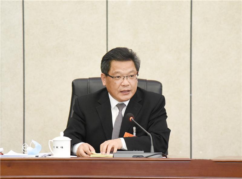 任振鹤在甘肃代表团审议政府工作报告时发言
