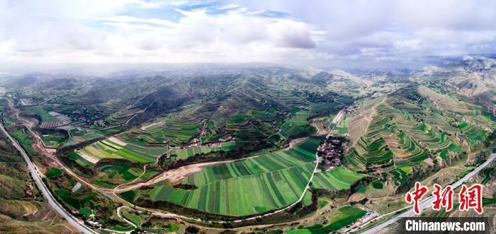 图为俯瞰定西市,昔日黄土塬,如今呈现一派绿景。 (资料图) 易思耿 摄