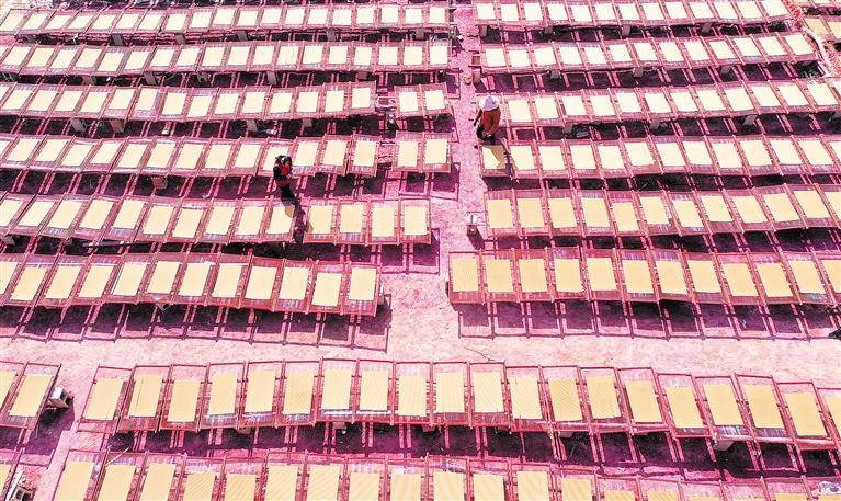 临夏州康乐县虎关乡关北村群众素有手工制香的传统