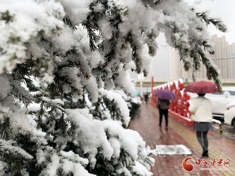 甘肃65个县区迎降水 沙尘天气趋于结束