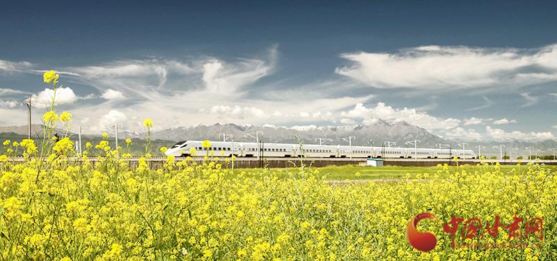 """坐上火车""""邂逅""""春天,你可以这样享""""铁路游"""""""
