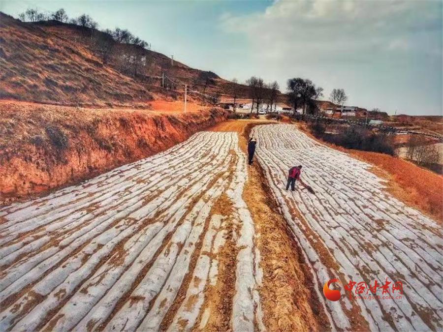 【陇拍客】兰州榆中:诗画田园春播忙