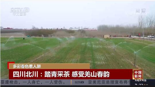 [中国新闻]多彩春色惹人醉