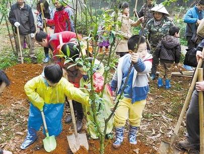 《甘肅省實施〈中華人民共和國森林法〉辦法》5月1日起施行 每人每年至少義務種植3棵樹
