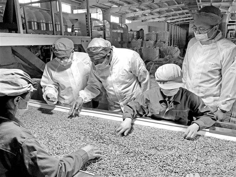 """甘肃农产品走俏""""一带一路""""沿线国家"""