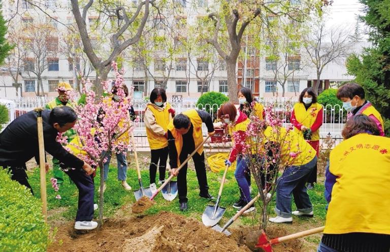 黄河风情线大景区管委会:补植补栽黄河风情线斑秃裸露地带