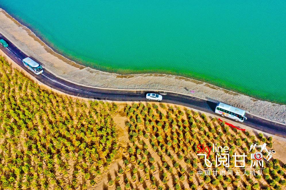 【飛閱甘肅】甘肅張掖:萬人植樹描繪春季最生動風景