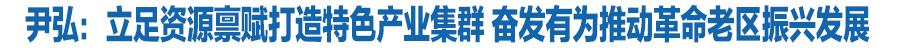 尹弘在庆阳市调研指导工作时强调:立足资源禀赋打造特色产业集群 奋发有为推动革命老区振兴发展