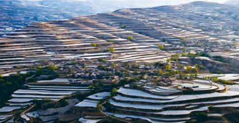 【百年华诞 绚丽陇原】第三篇章·第一单元|改革起步 农业发展