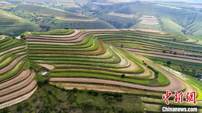 图为甘肃庆阳市环县境内的梯田。(资料图) 张永鑫 摄