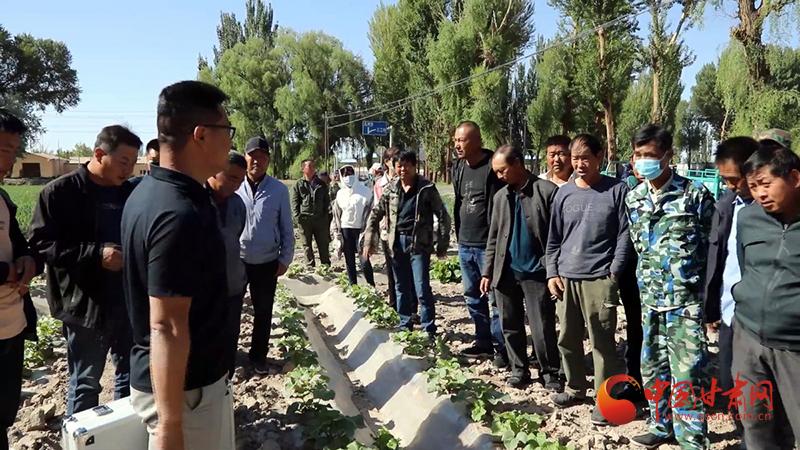 瓜州:农技培训助力乡村振兴