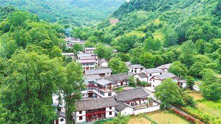 美丽乡村建设提质升级
