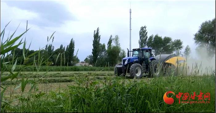 【小康圆梦·看甘肃】酒泉瓜州:现代农业体系构建蜜瓜大产业