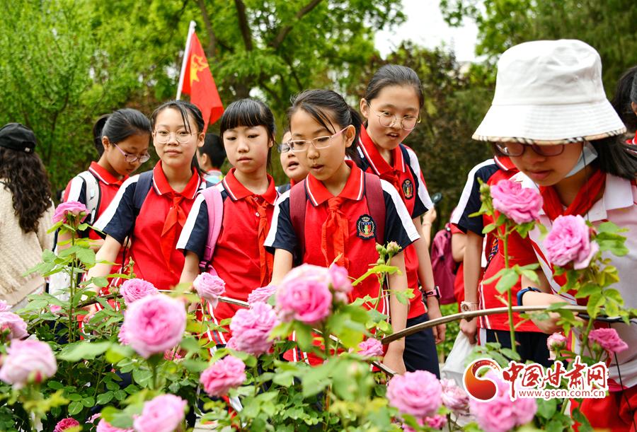 甘肃省2021年下半年中小学教师资格考试(笔试)9月2日起报名