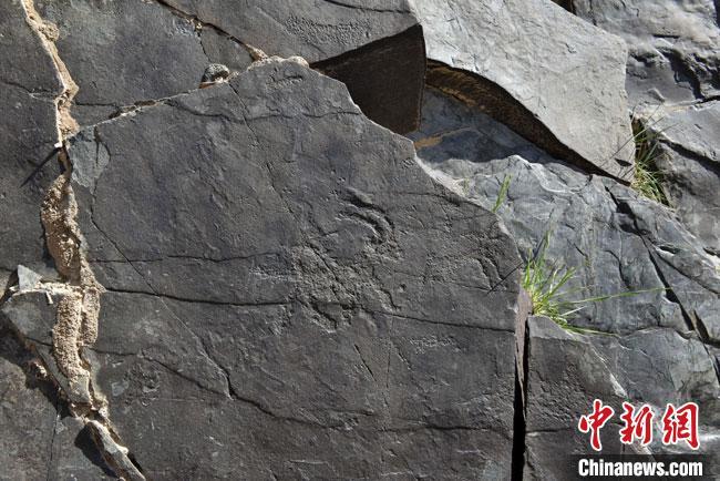 图为羊岩画。(资料图) 呼和巴尔斯 摄