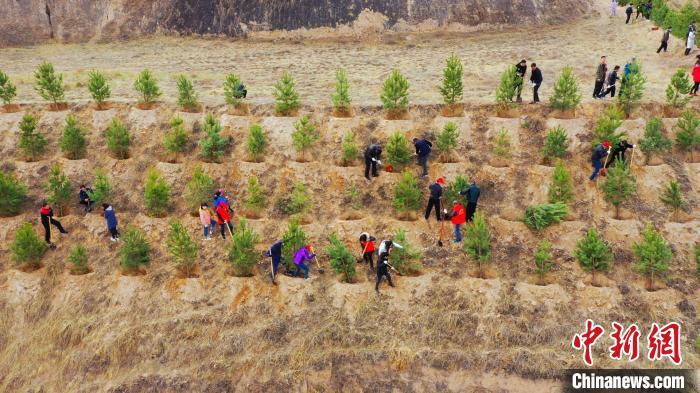 图为榆中县开展义务植树活动。(资料图) 彭昱 摄