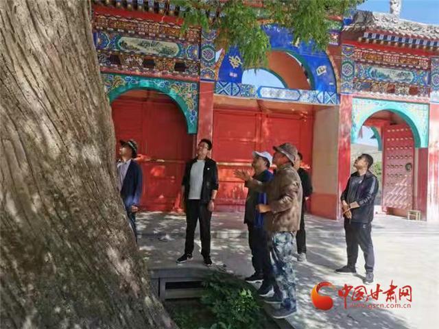为民办实事 甘肃省检察院发布的这些案例和群众生活息息相关