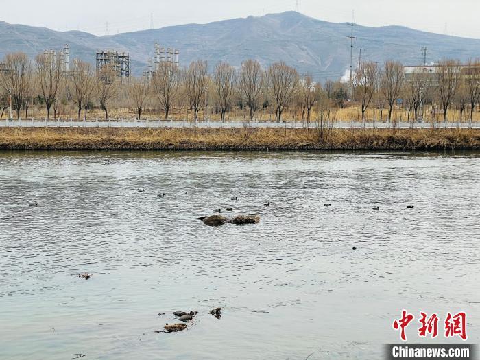 甘青两省签署跨界水体监测信息共享协议